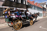 horse drawen carriage charleston south carolina