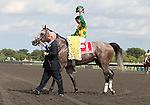 21 August 2010: PADDY O'PRADO and Jockey Kent Desormeaux are lead to the winner's circle by Jerry Crawford of Donegal Racing after winning the 34th running of the G1 Secretariat Stakes at Arlington Park in Arlington Heights, Illinois.