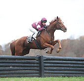 Regal Hour and Diana Gillam in the Ledyard.