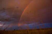 Rainbows touch farmland outside Simms, Montana, USA.