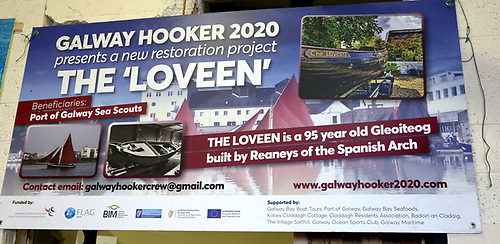 A poster details of the Loveen project