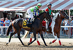 Rushing Fall in the Post Parade for the Lake Placid Stakes  (Grade 2) Aug. 18, 2018 at the Saratoga Race Course, Saratoga Springs, NY.    (Bruce Dudek/Eclipse Sportswire)