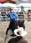 Virginia City International Camel Races 2015