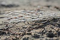 inquinamento da plastica non biodegradabile sulle spaigge