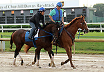 LOUISVILLE, KY -MAY 27: Preakness third place finisher Tenfold, with exercise rider Angel Garcia, galloped at Churchill Downs, Louisville, Kentucky during a special training time for Belmont Stakes contenders. The track was muddy from an overnight rain. (Photo by Mary M. Meek/Eclipse Sportswire/Getty Images)