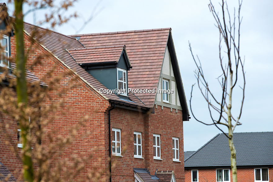 26/03/19<br /> <br /> Smartroof houses at Bloors Homes, Frearson Rd, Donington le Heath, Hugglescote, Coalville LE67 2XB<br /> <br /> All Rights Reserved, F Stop Press Ltd.  (0)7765 242650  www.fstoppress.com rod@fstoppress.com