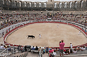 Bull running in the Roman Arena, Arles, France.