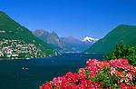 CHE, Schweiz, Tessin, Blick über den Luganer See auf Castagnola | CHE, Switzerland, Ticino, View across Lago Lugano towards Castagnola