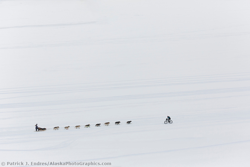 Dog team and fat tire biker on the Tanana river during the 2015 Iditarod.