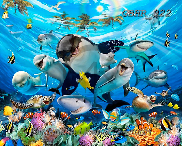 Howard, SELFIES, paintings+++++,GBHR922,#selfies#, EVERYDAY ,maritime,sharks,dolphins ,puzzle,puzzles
