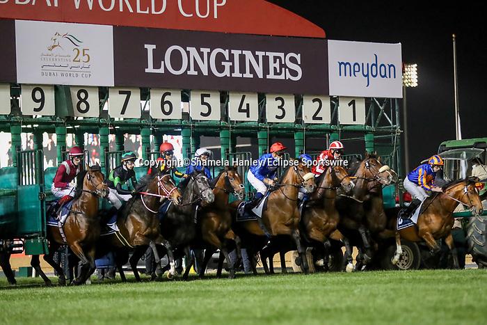 March 27, 2021: Horses break from the gate for the start of the Dubai Sheema Classic on Dubai World Cup Day, Meydan Racecourse, Dubai, UAE. Shamela Hanley/Eclipse Sportswire/CSM