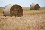 Europa, DEU, Deutschland, Hessen, Landkreis Fulda, Huenfeld, Mackenzell, Hessische Rhoen, Agralandschaft nach der Getreideernte, Strohballen, Kategorien und Themen, Natur, Umwelt, Landschaft, Landschaftsfotos, Landschaftsfotografie, Landschaftsfoto, Landwirtschaft, Agrarlandschaft, Agrar, Agrarwirtschaft, Anbau, Feld, Acker, Nutzpflanzen, Nutzpflanze<br /> <br /> [Fuer die Nutzung gelten die jeweils gueltigen Allgemeinen Liefer-und Geschaeftsbedingungen. Nutzung nur gegen Verwendungsmeldung und Nachweis. Download der AGB unter http://www.image-box.com oder werden auf Anfrage zugesendet. Freigabe ist vorher erforderlich. Jede Nutzung des Fotos ist honorarpflichtig gemaess derzeit gueltiger MFM Liste - Kontakt, Uwe Schmid-Fotografie, Duisburg, Tel. (+49).2065.677997, ..archiv@image-box.com, www.image-box.com]