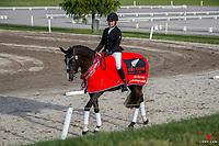 NZL-Cassandra Dally-Braun rides Jagermeister CD. 2020 NZL-Bates Saddles NZ Dressage Championships. NEC Taupo. Thursday 19 November 2020. Copyright Photo: Libby Law Photography