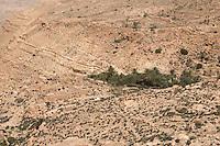 Jebel Nefusa, near Jadu, Libya - Abandoned Berber village, Date Palm Tree Grove.