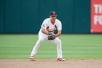 Springfield Cardinals shortstop Alex Mejia (7) during a game against the San Antonio Missions on June 4, 2017 at Hammons Field in Springfield, Missouri.  San Antonio defeated Springfield 6-1.  (Mike Janes/Four Seam Images)