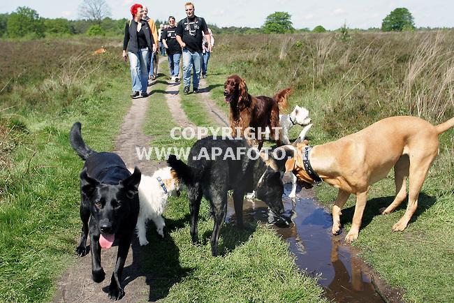 ede 220505 op de hondenkluiventocht ontmoeten zowel honden als baasjes elkaar , de intresses op op de wandeltocht waren verschillend.<br />foto frans ypma APA-foto