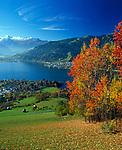 Oesterreich, Salzburger Land, Zell und Thumersbach am Zeller See im Herbst mit Kitzsteinhorn (3.203 m) | Austria, Salzburger Land, Zell and Thumersbach at Zeller Lake in autumn with Kitzsteinhorn Mountain (3.203 m)