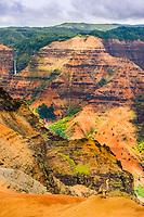The Nene (pronounced 'nay-nay') , Branta sandvicensis, is an endemic land bird, an endangered species and Hawaii's state bird. Kauai's Waimea Canyon is the background, Hawaii., USA