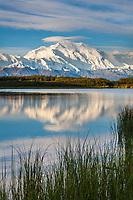Denali,  and reflection pond, at the west end of Denali National Park, Interior, Alaska.