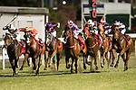 Jockeys riding their horses during the race 7 of during Hong Kong Racing at Happy Valley Race Course on November 08, 2017 in Hong Kong, China. Photo by Marcio Rodrigo Machado / Power Sport Images