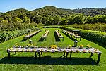 Avila Valley Barn, Wedding Grounds