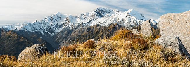 Alpine vegetation with highest peaks of Southern Alps, Aoraki Mount Cook, Mount Tasman and La Perouse, Westland Tai Poutini National Park, UNESCO World Heritage Area, West Coast, New Zealand, NZ