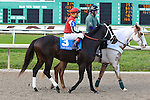 January 16, 2016: Ride on Curlin with Patrick A. Valenzuela up in the Louisiana Stakes race at the Fairgrounds race course in New Orleans Louisiana. Steve Dalmado/ESW/CSM