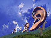 Giant ears satalite dishs