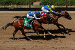 DEL MAR, CA  AUGUST 1:  Stablemates #5 Enbarr, ridden by Abel Cedillo and #1 Pinehurst, ridden by Mike Smith, make an impressive duo in the stretch with Pinehurst breaking his maiden.  (Photo by Casey Phillips/Eclipse Sportswire/CSM)