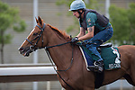 APR 25,2015:Red Cadeaux,trained by Ed Dunlop,prepares for the Audemars Piguet Queen Elizabeth 2nd Cup at Sha Tin in New Territories,Hong Kong. Kazushi Ishida/ESW/CSM