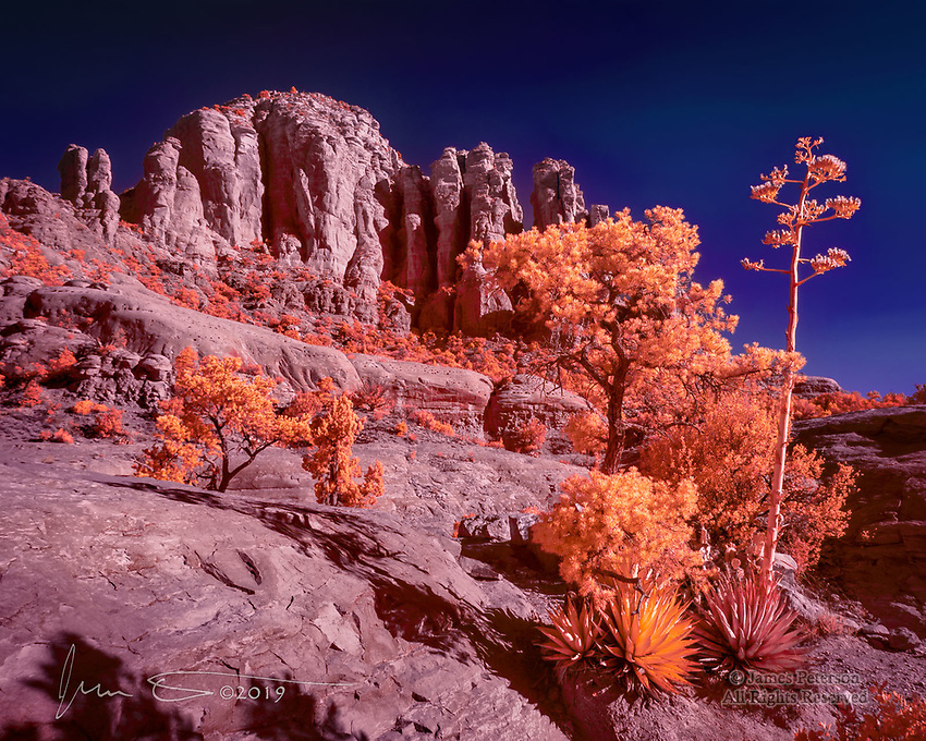 Looking Up from Chicken Point (Infrared).  This is the destination for one of the nicer hiking trails around Sedona, and on a sunny day (i.e., most of the time), it looks quite nice when photographed in infrared.