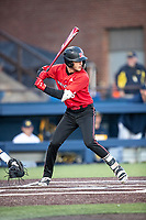 Rutgers Scarlet Knights outfielder Mike Nyisztor (8) at bat against the Michigan Wolverines on April 26, 2019 in the NCAA baseball game at Ray Fisher Stadium in Ann Arbor, Michigan. Michigan defeated Rutgers 8-3. (Andrew Woolley/Four Seam Images)