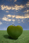 Grass rendering an apple