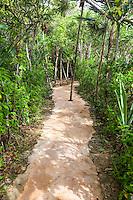 Nature Trail Path, Xel Ha Eco-adventure Park, Playa del Carmen, Riviera Maya, Yucatan, Mexico.