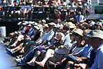 A crowd of about 8,000 attend the 20th annual Tahoe Summit in Stateline, Nev., on Wednesday, Aug. 31, 2016. Pres. Barack Obama was the keynote speaker at the event which focuses attention on protecting Lake Tahoe. Cathleen Allison/Las Vegas Review-Journal