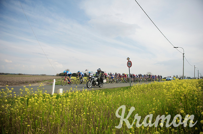 although in a spring mood, the peloton isn't able to catch lone race leader Niki Terpstra (NLD)   <br /> <br /> Dwars Door Vlaanderen 2014