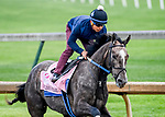 April 25, 2021: Pauline's Pearl, trained by trainer Steve Asmussen, exercises in preparation for the Kentucky Derby at Churchill Downs on April 25, 2021 in Louisville, Kentucky. John Voorhees/Eclipse Sportswire/CSM