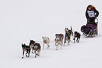 Sunday February 28, 2010  Tobin Sworts nears the finish line to arrive in 8th place on the finish day of Junior Iditarod . Willow , AK