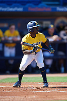Michigan Wolverines second baseman Ako Thomas (4) squares to bunt during a game against Army West Point on February 17, 2018 at Tradition Field in St. Lucie, Florida.  Army defeated Michigan 4-3.  (Mike Janes/Four Seam Images)