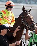 March 2010: Backtrack and Shane Sellers before the Louisiana Derby at the Fair Grounds in New Orleans, La.