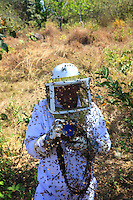 Thousands of bees attack the photographer Eric Tourneret. The black of the camera make the bees even more aggressive and they thrust their stingers into all the camera's rubber parts. ///Des milliers d'abeilles attaquent le photographe Eric Tourneret. Le noir de l'appareil photo rend encore les abeilles plus agressives et elles plantent leurs dards dans toutes les pièces en caoutchouc de l'appareil.