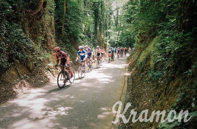 racing through the forest<br /> <br /> 3rd Dwars Door Het hageland 2018 (BEL)<br /> 1 day race:  Aarschot > Diest: 198km