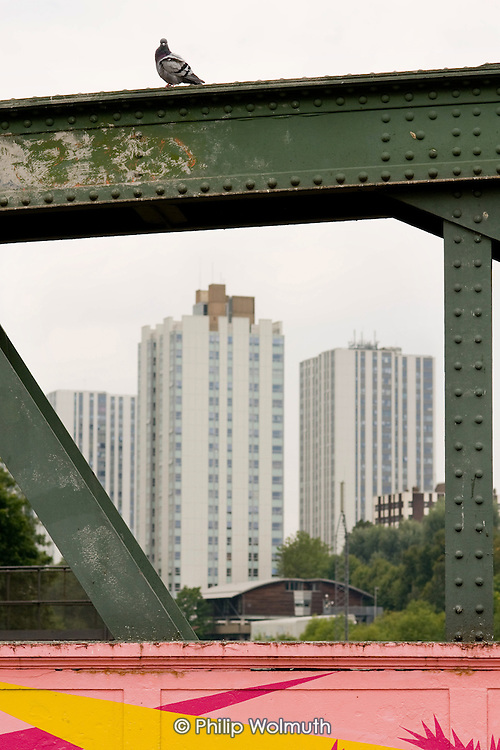 High rise towers of Camden Council's Chalcots Estate in Swiss Cottage