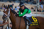 November 26, 2015: The Pizza Man with Mike Smith up win the Hollywood Turf Cup (Grade 2) at Del Mar Thoroughbred Club in Del Mar, California. Zoe Metz/ESW/CSM