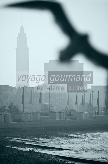 Europe/France/Normandie/Haute-Normandie/76/Seine-Maritime/Le Havre: le front de mer  la plage et la silhouette de l'Hôtel de ville