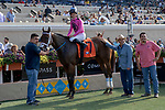 DEL MAR, CA  JULY 28:  #7 Fly to Mars,ridden by Flavien Prat, in the winners circle after  winning the California Dreamin' Stakes on July 28, 2018, at Del Mar Thoroughbred Club in Del Mar, CA.(Photo by Casey Phillips/Eclipse Sportswire/Getty Images)