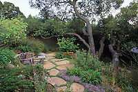 California hillside garden with bench on stone patio designed around live oak tree Quercus agrifolia