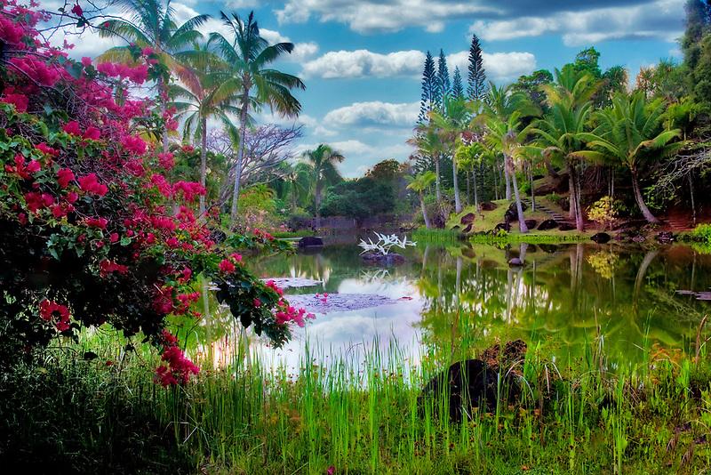 Pond and garden at Na Aina Kai Botanical Gardens. Kauai, Hawaii