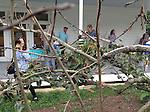 Persimmon Tree Ceremony