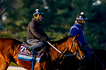 October 31, 2020: Jackie'S Warrior, trained by trainer Steven M. Asmussen, exercises in preparation for the Breeders' Cup Juvenile at Keeneland Racetrack in Lexington, Kentucky on October 31, 2020. Scott Serio/Eclipse Sportswire/Breeders Cup/CSM